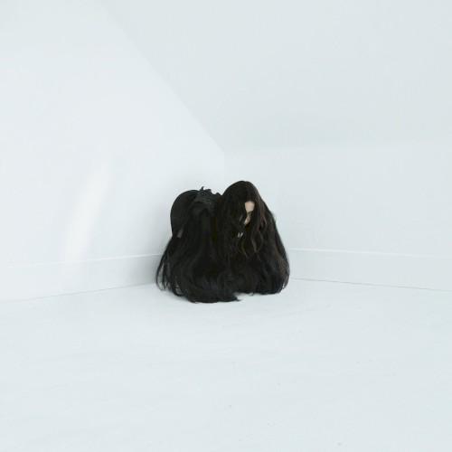 Album cover for Hiss Spun by Chelsea Wolfe.