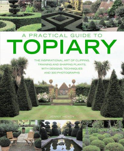A Practical Guide to Topiary by Jenny Hendy