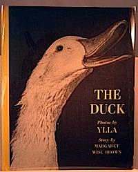 Duck by Margaret Wise Brown